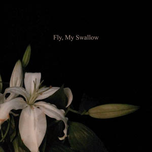 Fly, My Swallow